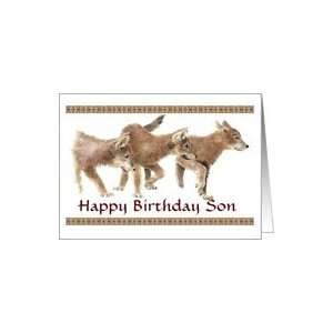 Happy Birthday Son General Blank Wolf Cubs Card: Toys & Games