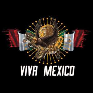 VIVA MEXICO T SHIRT MEXICAN FLAG & EAGLE S,M,L,XL,2x,3X