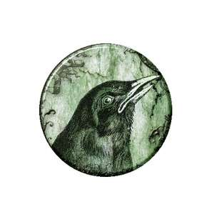 Crow Head Ring Necklace Pendant Bottle Opener Button Mirror Magnet 1