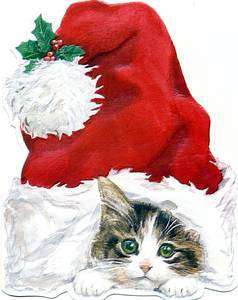 Box of 15 Christmas Cards   Carol Wilson Santa Cap Kitten