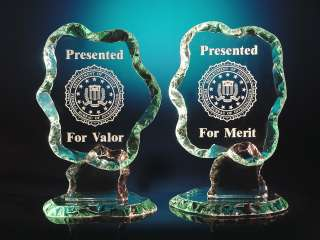 CIA, FBI or DEA LOGO / SEAL   ETCHED GLASS AWARD