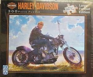 Harley Davidson PUT YOUR MONEY ON GLOSS BLACK 300 Pc