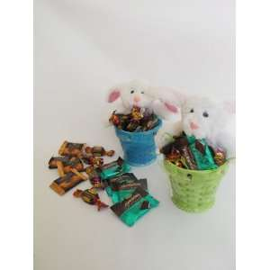 Pack Green & Blue Ceramic Easter Basket Planters With 2 Plush