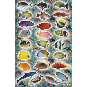 Fish Marine Vinyl Decal Sticker Sheet P07