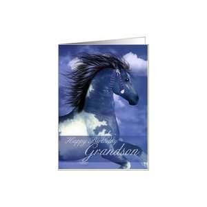 Equine Birthday Card North American Indian Style Card Toys & Games