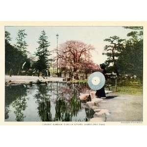 1921 Print Maruyama Park Kyoto Japan Cherry Blossom Park
