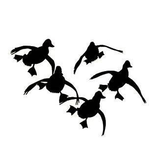 Rich n Tone Quack Kills Duck Hunting Decal Sports