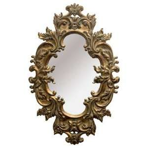 The Lion Framed Mirror in Antique Gold Home & Kitchen