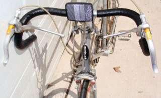 Vintage Schwinn Bike 10 Speed Mens Bicycle Silver/grey/gray tall 24