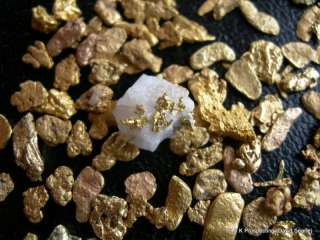 lb Montana Gold nuggets panning paydirt mine one bag