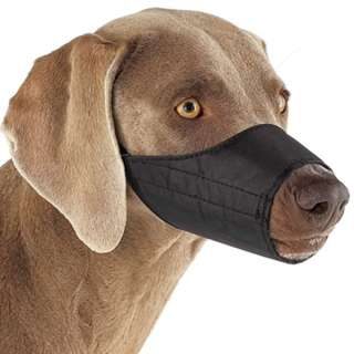 Guardian Gear Lined Nylon Dog Muzzle Grooming 0 5XL Black