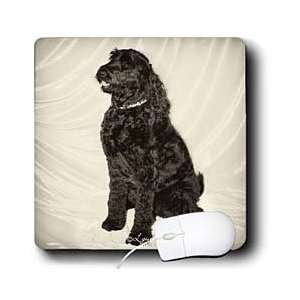 Milas Art Dogs   Black Dog   Mouse Pads Electronics