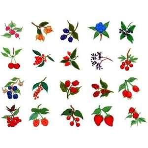 Viking 1+/Rose/Iris Embroidery Machine Card BERRIES #1