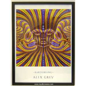 Bardo Being By Alex Grey Framed Edition 19x25: Home