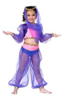 Genie Harem Girls Costume   Belly Dancer Costumes