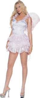 layered skirt, includes glitter flower wings. Adult size Small (2 4