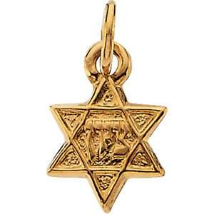 Genuine IceCarats Designer Jewelry Gift 14K Yellow Gold Star Of David