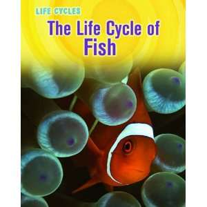 The life cycle of a clown fish for Clown fish life cycle