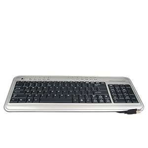 100 Key USB Ultra Slim MultiMedia Keyboard (Silver/Black): Electronics
