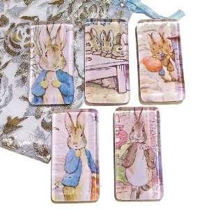 The Black Cat Jewellery Store Peter Rabbit Rectangle Glass