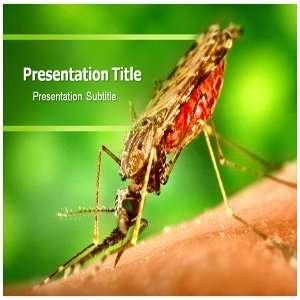 Malaria Powerpoint Templates   Malaria Powerpoint (PPT