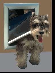 DogWalk Dual SECURITY pet dog door doggie sale DOORS