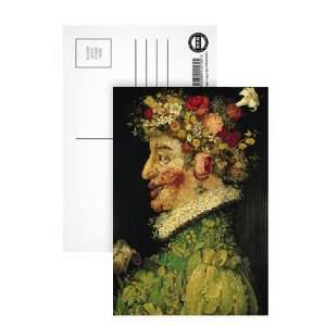 Spring, (oil on canvas) by Giuseppe Arcimboldo   Postcard
